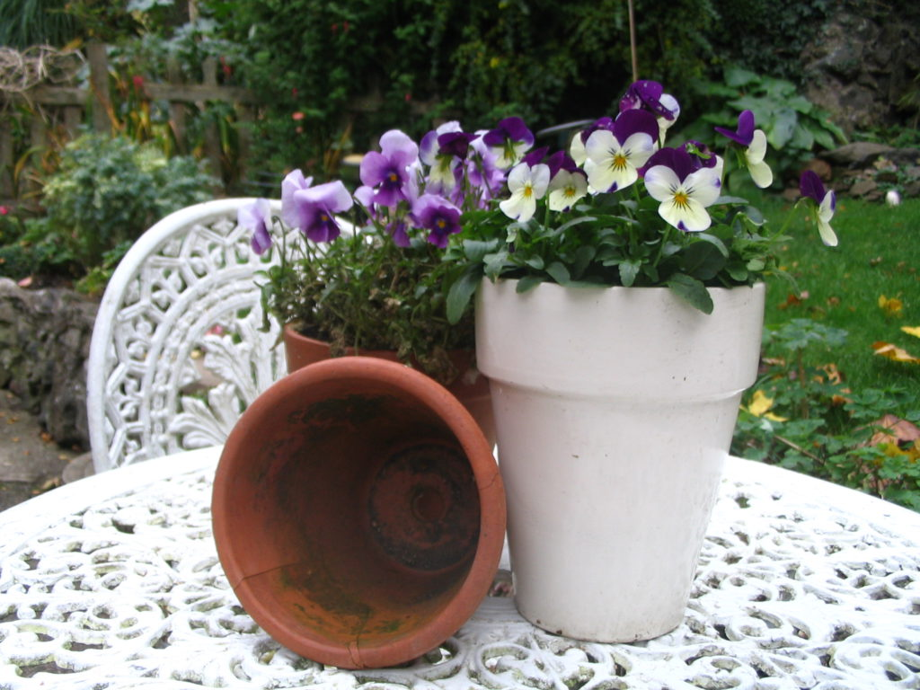 Ideas For Spring Containers