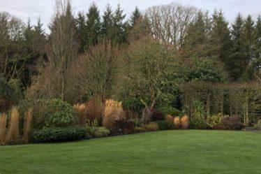 Rosemoor Devon