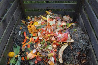 Make your own quality compost