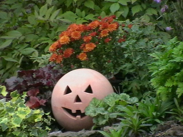 What jobs to do in the garden in October