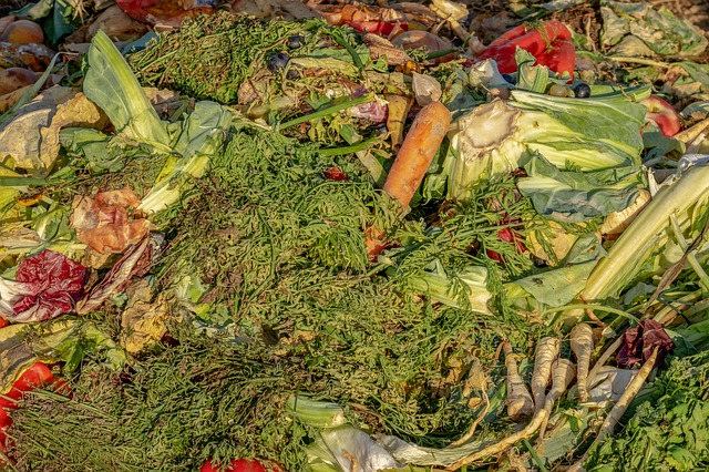 Organic garden and household waste