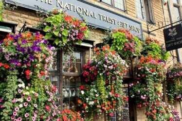 National Trust Membership. Beautiful floral display at a National Trust shop