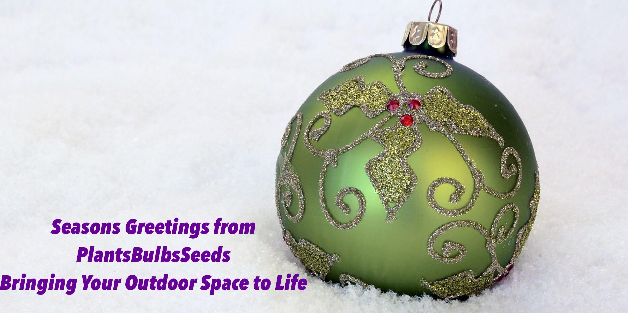 Plants Bulbs Seeds
