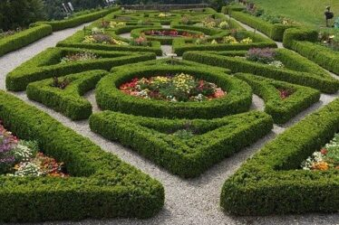 Clipped box hedges in a geometric pattern, Four of the Best Cordless Garden shears