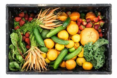 Funky Veg Kit By Plant Theatre. Box of fresh vegetables Grow your own easy vegetables and fruit