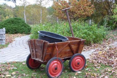 Old wooden garden cart. 5 best Rated Garden Carts Review