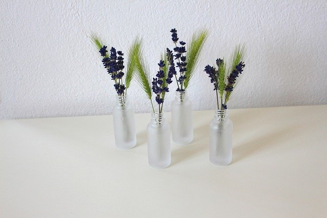 Four glass bud vases with Lavender , Choosing the best cutting flowers garden plants