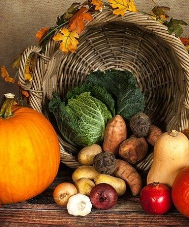 Basket of heirloom vegetables. Gardening with heirloom seeds and plants