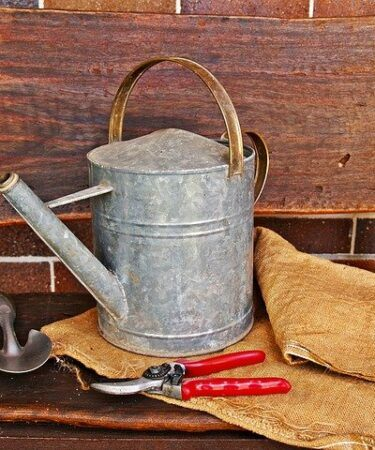 Best Secateurs Review. Watering can and red handled secateurs