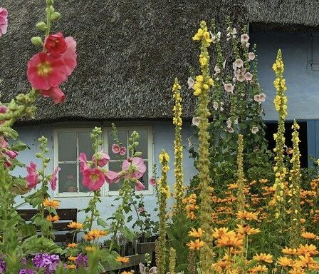 10Steps To A Perfect English Cottage Garden Design