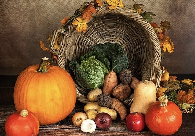 Basket of harvest vegetables and fruit. Gardening with the Moon